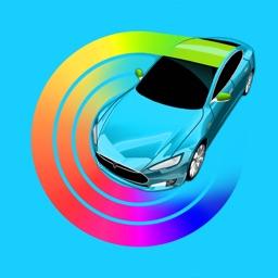 Car Wrapper for Tesla