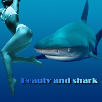 Codes for Beauty and shark Hack