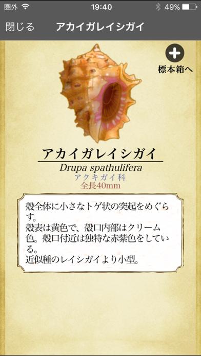 ザ・図鑑 貝殻100種のおすすめ画像2