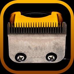 Shave My Hair and Beard - Electric Razor Prank