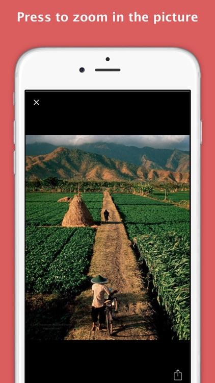 InsPad - Instagram for iPad