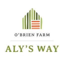 Aly's Way