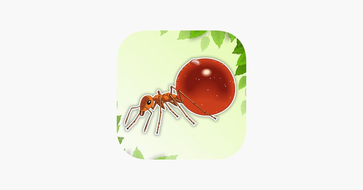 Ant Boyama Sayfa Cizimler Kitabi Cocuk App Store Da