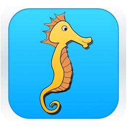 Easy Swimmer - Seahorse