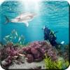 鲨鱼 狩猎 模拟器
