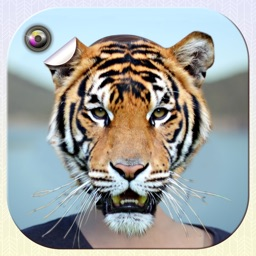 Animal Face Swap Photo Editor & Funny Stickers