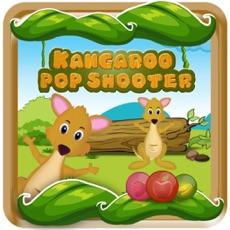 Activities of Kangaroo Pop Shooter Blast