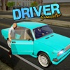 Driver Simulator - iPhoneアプリ