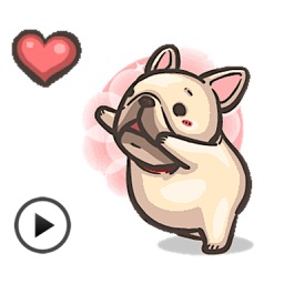 Animated Cute French Bulldog