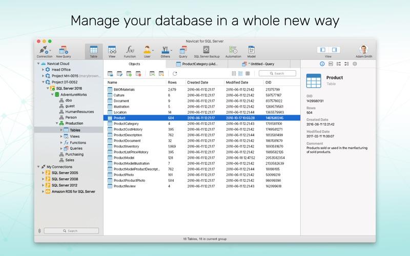 Navicat 12 for SQL Server Screenshots