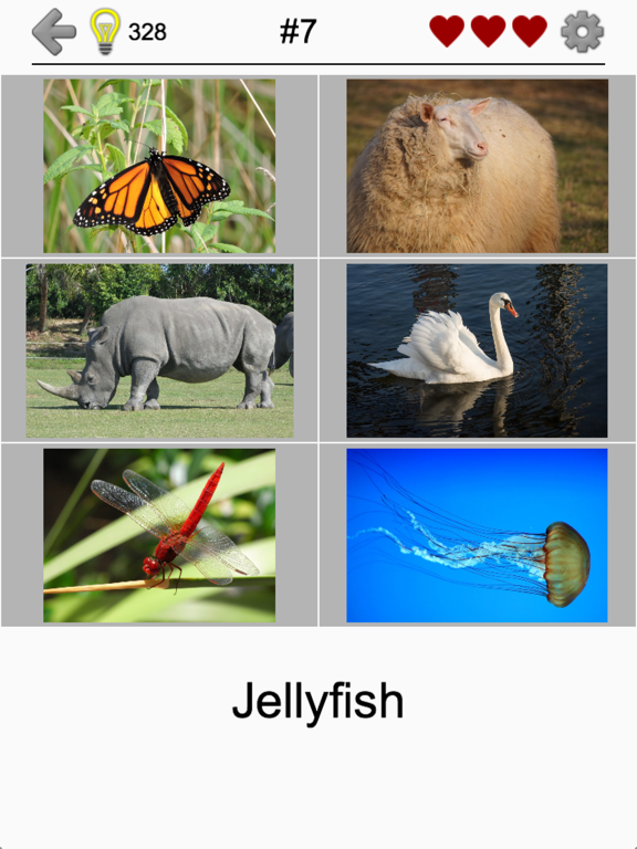 Easy Pictures - Fun Photo-Quiz screenshot 7