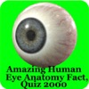Human Eye Anatomy Fact,Quiz 2k
