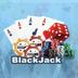 95.LeisureBlackJack-poker