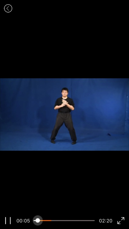 WingChun Kung Fu-咏春拳 screenshot-3