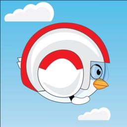 Bird Racing
