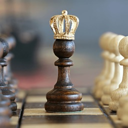 Chess Master - Ultimate chess guide