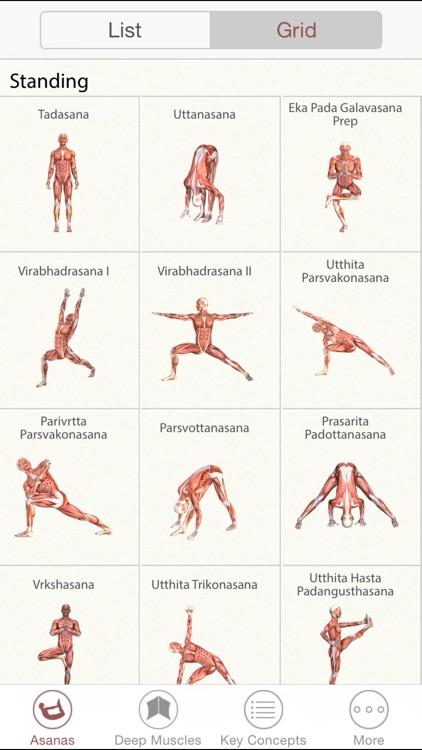 3D Yoga Anatomy Lite screenshot-3