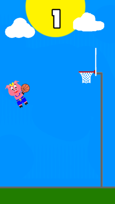 Molly Pig Basketball