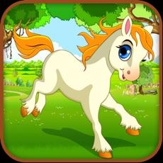 Activities of Baby Pony: My Little Horse Run