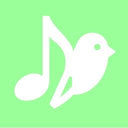 Songbird - Lyric Video Maker
