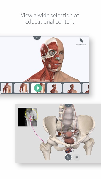 Complete Anatomy for iPhone screenshot-3