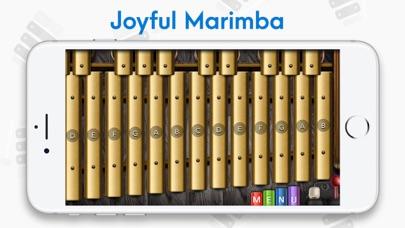 Xylophone: Marimba, Vibraphone