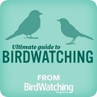 Codes for Ultimate Guide to Birdwatching Hack