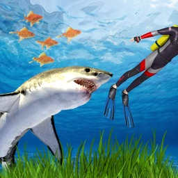 Angry Shark Hunting Adventure