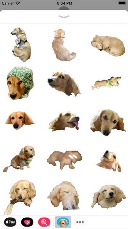 Cleo Daily Stickers screenshot-3