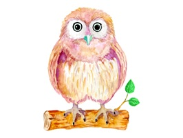 Watercolor Owl Stickers Pack