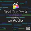 Audio Course For Final Cut Pro