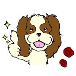 Cavalier King Charles Spaniel Dog Sticker