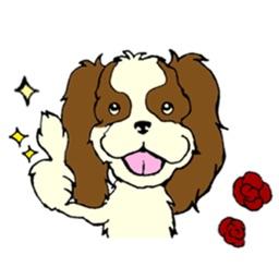 Cavalier King Charles Spaniel Dog Sticker
