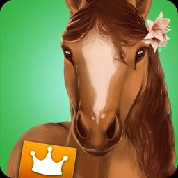 HorseHotel Premium