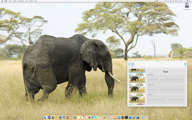 Dynamic Wallpapers screenshot 3