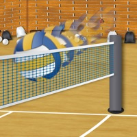Codes for Spike the Volleyballs Hack
