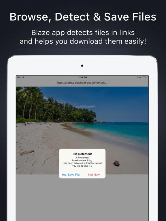 Blaze: Browser & File Manager screenshot 6