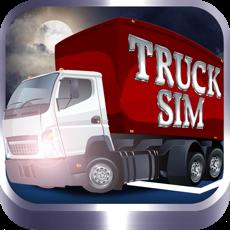 Activities of TruckSim: 3D Night Parking Simulator