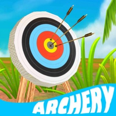 Activities of Archery Master Challenges