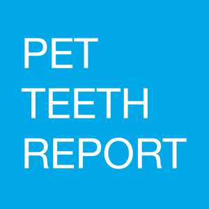 Pet Teeth Report app