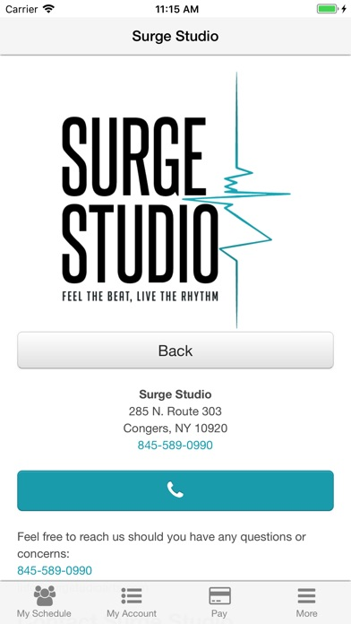 Surge Studio-2
