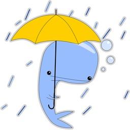 Blue Melancholy Whale Platon