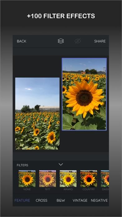 LayoutPic - Photo grid screenshot 3