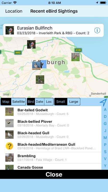 Big Year Birding GB screenshot-4