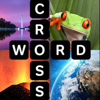 Codes for Crossword Club Hack