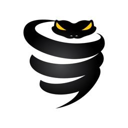 VPN: Private & Fast VyprVPN