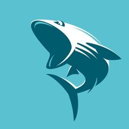 鲨鱼影视-高清影视大全