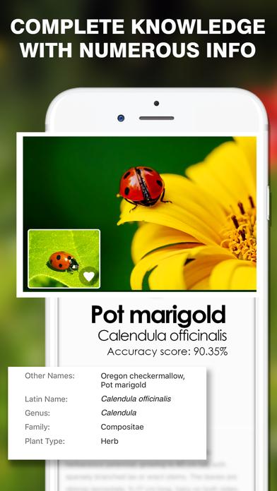 Smart Identifier: Plant+Insect screenshot 1