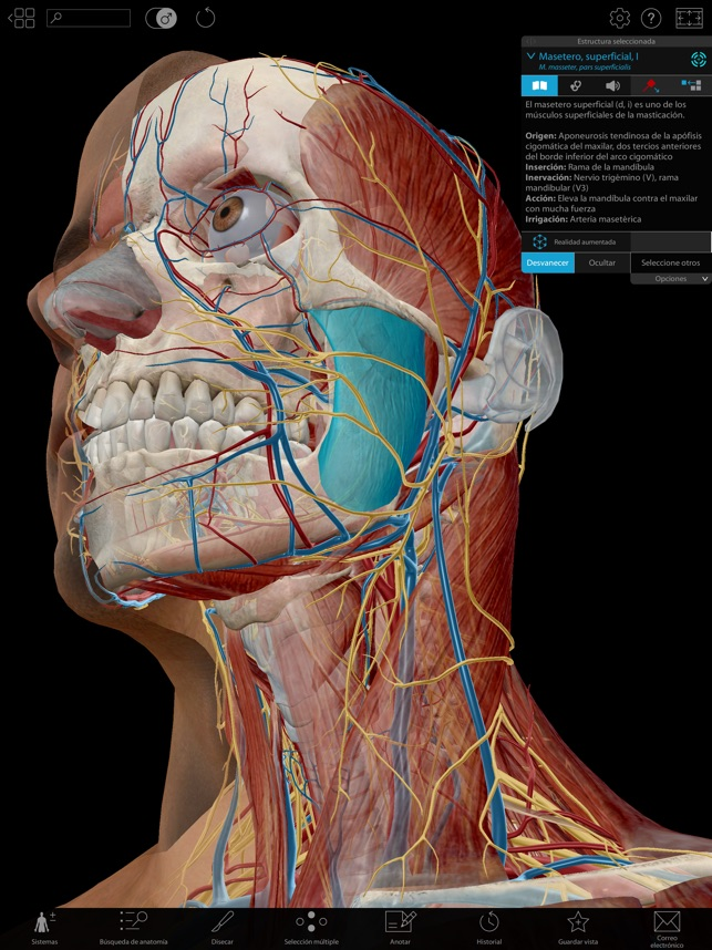 Atlas de anatomía humana 2019 en App Store