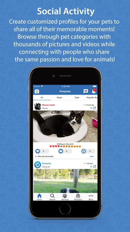 Pawpular - Pet Society & Care screenshot-5